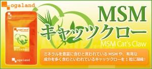 ■即納■お徳用MSM&キャッツクロー(約3ヶ月分)3150円以上送料無料 キャッツクロー 健康維持 激安 特価 サプリ イソテロポディン