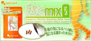 お徳用むくMix-ZERO(2個セット・約6ヶ月分)ダイエット 3150円以上送料無料 健康ケア ブーツやスカートケアに アクティブファイバー