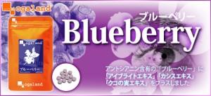 ブルーベリー(約1ヶ月分)3150円以上送料無料 サプリメント カシス アントシアニン デジタルケア