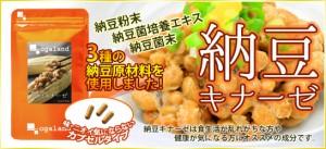 納豆キナーゼ(約1ヶ月分)3150円以上送料無料 ナットウ サプリメント 激安 生活習慣 エイジングケア トイレ習慣 ダイエット 健康 納豆