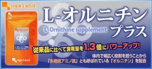 ■即納■お徳用L-オルニチン(約3ヶ月分)3150円以上送料無料 オーガランドのサプリメント 健康食品 オルニチン お酒