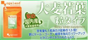 お徳用大麦若葉粒タイプ(2個セット・約6ヶ月分)3150円以上送料無料 ケール ゴーヤ 緑茶 ビタミン ミネラル サプリメント 激安 野菜嫌い