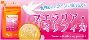 プエラリアミリフィカ(約1ヶ月分)3150円以上送料無料 ハリ ダイエット ライン サプリメント 下着 美容ケア メリハリ BODY 美容