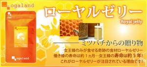 お徳用ローヤルゼリー(2個セット・約6ヶ月分)3150円以上送料無料 サプリメント 激安 健康ケア ロイヤルゼリー 必須アミノ酸 美容