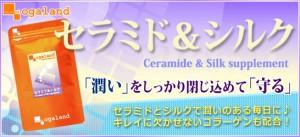 ★半額セール★セラミド&シルク(約1ヶ月分)送料無料 サプリメント 激安 スキンケア コラーゲン 美容ケア ヒアルロン酸 シルクペプチド