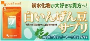 お徳用白いんげん豆サプリ(約3ヶ月分)3150円以上送料無料 ダイエット 白インゲン豆 特価 炭水化物 カット サプリメント 太りやすい