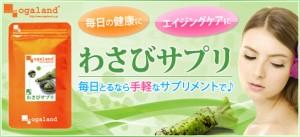 お徳用わさびサプリ(2個セット・約6ヶ月分)3150円以上送料無料 フィッシュコラーゲンペプチド 美容ケア 健康サポート ワサビ 透明感