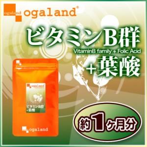 ビタミンB群+葉酸(約1ヶ月分)3150円以上送料無料 栄養 健康ケア 美容ケア ダイエット サプリメント 激安 特価 健康食品 葉酸サプリ
