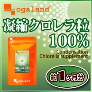 凝縮クロレラ粒100%(約1ヶ月分)3150円以上送料無料 植物性たんぱく質 ビタミン ミネラル 野菜の不足 サプリメント 美容 健康 ケア