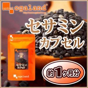 セサミンカプセル(約1ヶ月分)3150円以上送料無料 激安 健康ケア 黒ゴマ 胡麻麦茶 胡麻油 ゴマ油 サプリメント エイジング