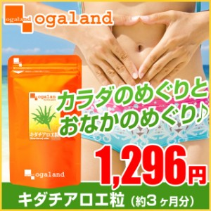 お徳用キダチアロエ粒(約3ヶ月分)3150円以上送料無料 サプリメント 美容 健康 ビタミン ミネラル 食物繊維