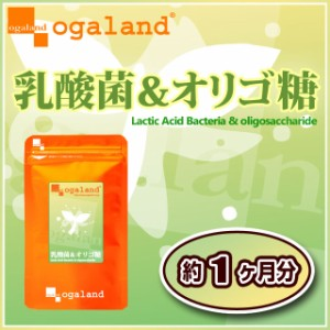 乳酸菌&オリゴ糖(約1ヶ月分)3150円以上送料無料 ヨーグルトの代わりに 激安 美容ケア サプリメント ダイエット diet