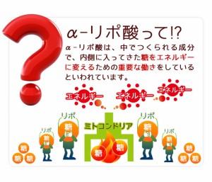 ■即納■お徳用α-リポ酸(約3ヶ月分)3150円以上送料無料 アルファリポ酸 ダイエット クエン酸 サプリメント 筋トレ