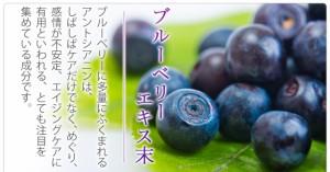 お徳用ブルーベリー(約3ヶ月分)3150円以上送料無料 サプリメント アントニアシン デジタル