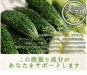 お徳用白いんげん豆サプリ(約3ヶ月分)3150円以上送料無料 ダイエット 炭水化物 サプリメント ファビノール