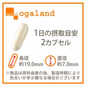 お徳用α-リポ酸(2個セット・約6ヶ月分)3150円以上送料無料 アルファリポ酸 ダイエット クエン酸 サプリメント 激安 美容ケア 健康食品