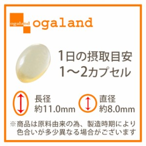 オメガ3-DHA&EPA&α-リノレン酸サプリ(約1ヶ月分)3150円以上送料無料 魚 サプリメント 亜麻仁油 健康食品