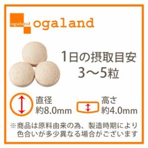 お徳用牡蠣エキス粒(約3ヶ月分)3150円以上送料無料 ミネラル たんぱく質 ビタミン 健康ケア 激安 サプリメント 亜鉛