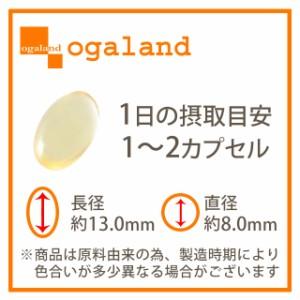 お徳用天然由来 ビタミンEカプセル(約3ヶ月分)3150円以上送料無料 サプリメント 美容 d-a-トコフェロール