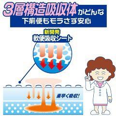 アテント お肌安心パッド 軟便モレも防ぐ(16枚入)(発送可能時期:3-7日(通常))[尿とりパッド]