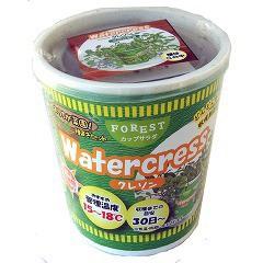 FOREST カップサラダ クレソン(1セット)(発送可能時期:3-7日(通常))[種子・球根]