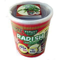 FOREST カップサラダ ラディッシュ(1セット)(発送可能時期:3-7日(通常))[種子・球根]