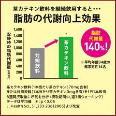 ヘルシア 緑茶(1L*12本入)(発送可能時期:3-7日(通常))[トクホのお茶]【送料無料】