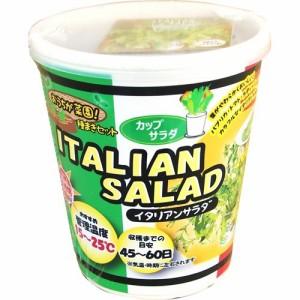 FOREST カップサラダ イタリアンサラダ(1セット)(発送可能時期:3-7日(通常))[種子・球根]