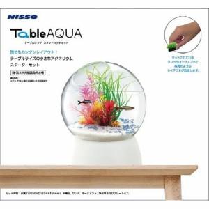 テーブルアクア スタンドポットセット(1セット)(発送可能時期:3-7日(通常))[水槽]