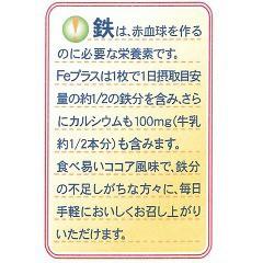 Feプラス 鉄分配合ウエハース(20枚入)(発送可能時期:3-7日(通常))[バランス 栄養]