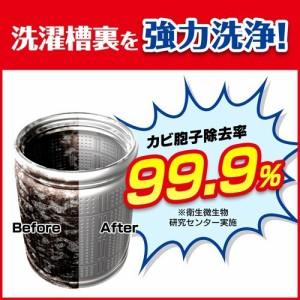 カビキラー 洗たく槽カビキラー(550g)(発送可能時期:3-7日(通常))[洗濯槽用洗剤]