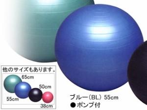 秦運動具工業 バランスボールセイフティー55cm ポンプ付き DB55P