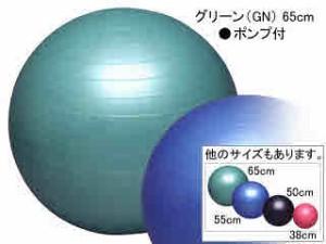 秦運動具工業 バランスボールセイフティー65cm ポンプ付き DB65P