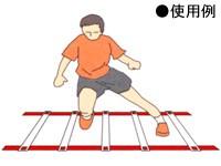 秦運動具工業 コンディショニングラダー TCR002