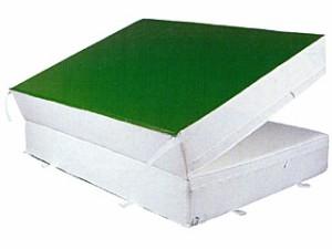 中津テント 防菌・防臭ウレタンマット2つ折りすべり止め付(屋内用) HES-653