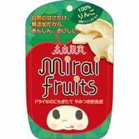 【未来果実 ミライフルーツ りんご 12g】