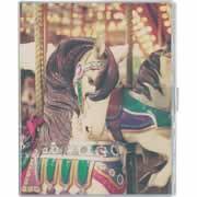 【カバーポケットアルバム 溶着式/KG判2段ポケット台紙 40枚収納 フォトメリーゴーランド アカ-PVKG-40-6】[代引選択不可]