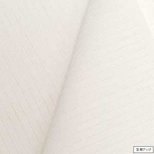 夏用東レシルック 相傘絽エルミテ半衿(白)日本製