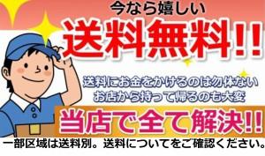 ベッド シングル  シングルベッド マットレス マットレス付き 国産 ベッドフレーム フロアベッド 送料無料 【190S】