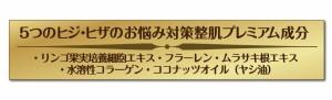 【☆定形外郵便で送料無料】ぷっくぷく重曹ヒザ泡プレミアムパック