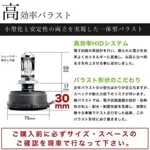 N84/94W シャリオグランディス [H9.10〜H15.4] 極 ワンタッチHIDキット H4(Hi/Lo) 55W ヘッドライト用