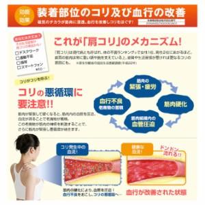 phiten(ファイテン)RAKUWA磁気チタンネックレスS-|| 45cm/55cm【日本製】tg677
