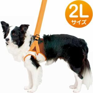 ペティオ 老犬介護用 歩行補助ハーネス 前足用 2L(中・大型犬用) 【犬用品】【犬用ハーネス】【胴輪】