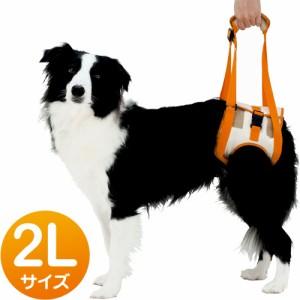 ペティオ 老犬介護用 歩行補助ハーネス 後足用 2L(中・大型犬用) 【犬用品】【犬用ハーネス】【胴輪】