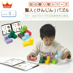 【送料無料】 賢人パズル 立体パズル 脳力パズル 知育玩具 子供玩具