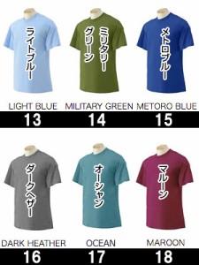カラー1★6.1オンスウルトラコットン半袖Tシャツ【取寄】40色 メンズ サンタリート!GILDAN(GD2000)チーム