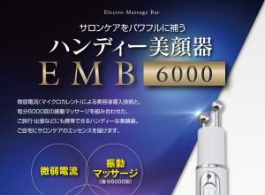 【送料無料】 お得な2個セット エレクトロ マッサージ バー EMB-6000