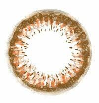 ミッシュブルーミン ヴィンテージキャメル 10枚 −4.50