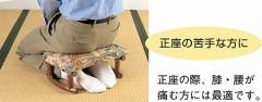 籐[ラタン] らくらく座椅子 アームレスタイプ 2個組【TK8】