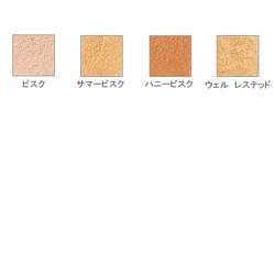 ★純正品/送料無料★お楽しみコフレ+ベアミネラル コンシーラー(M)(SPF 20・ PA++)